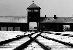 Auschwitz School Trip / Study Tour, 4 days