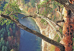 The Dunajec Gorge and Pieninski National Park